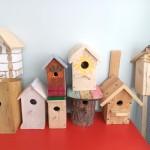 Конкурс скворечников «Домик для птиц»