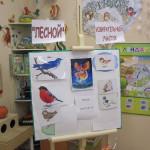 «Главная птица леса!»
