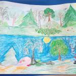 «Защита леса»
